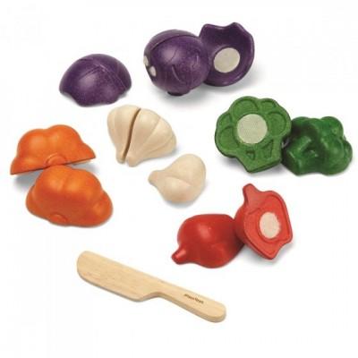 Plan Toys Assortiment légumes 5 couleurs
