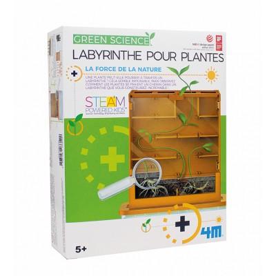 4M - Green Science - Labyrinthe pour plantes